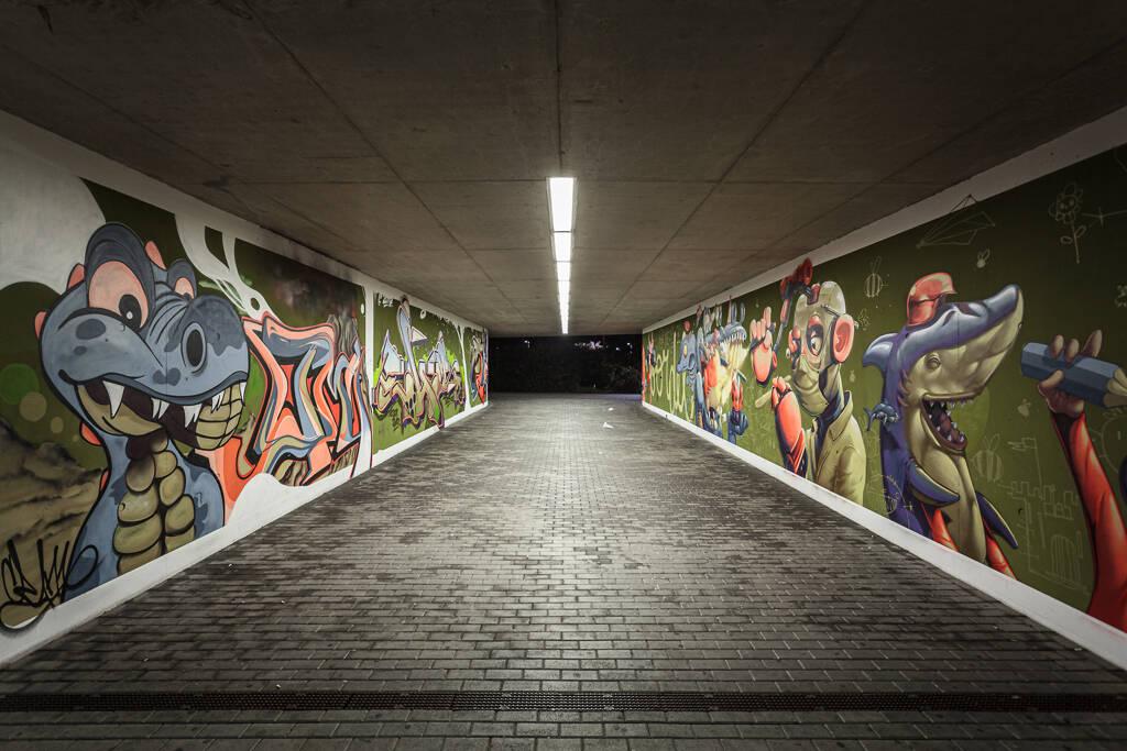 Grand angle sur le tunnel séparant le gare de lamadelaine et le Lycée Technique Mathias Adam...